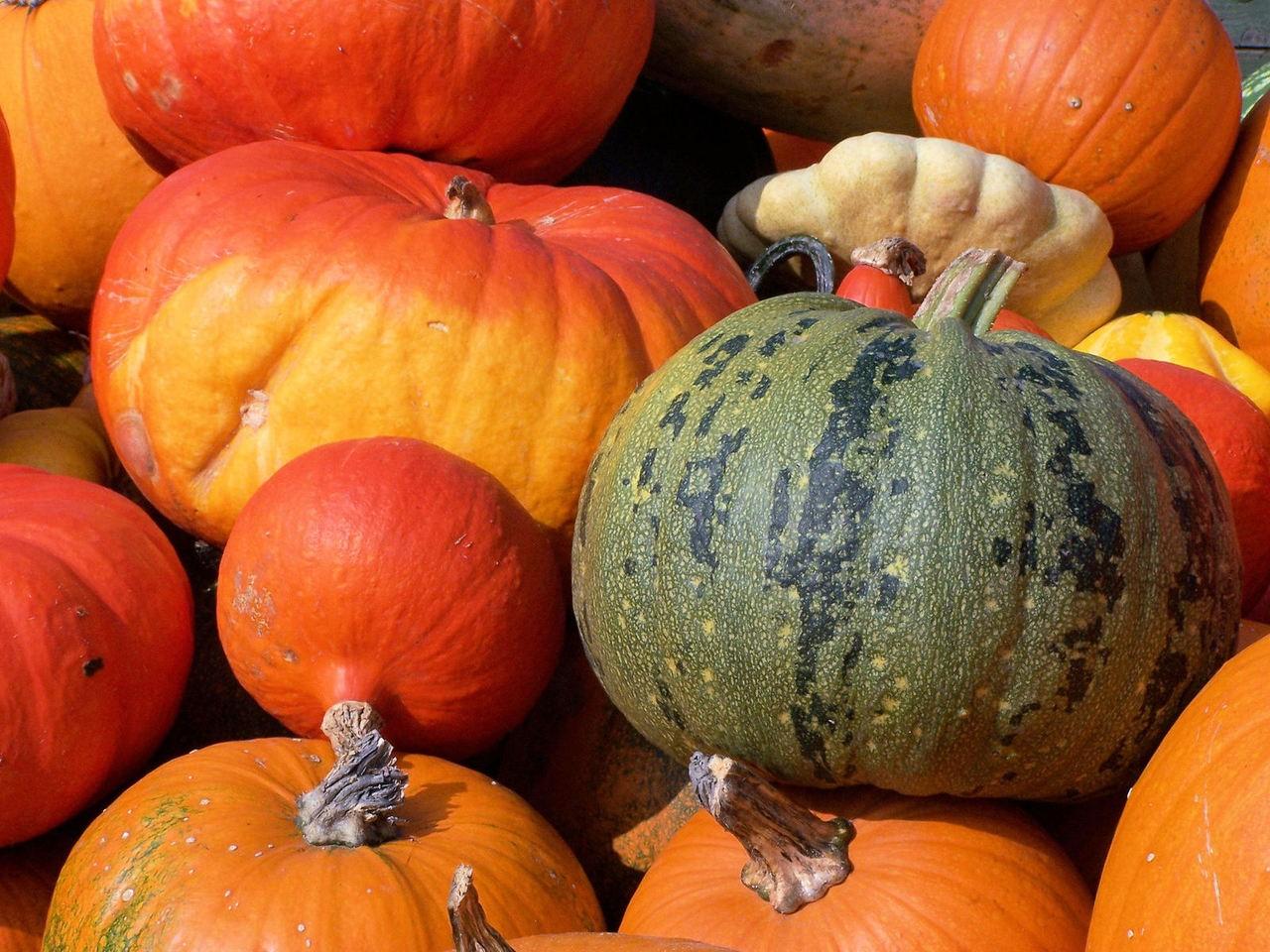 Opryski i ich wpływ na warzywa